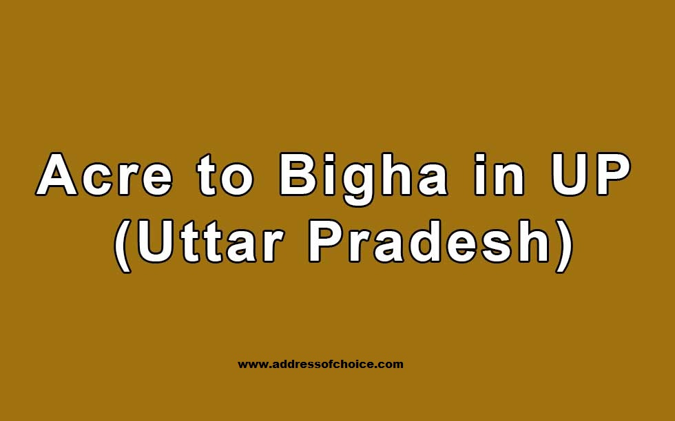 How to calculate Hectare to Bigha in Uttar Pradesh – 1 hectare to bigha in  UP