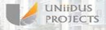 Uniidus Projects