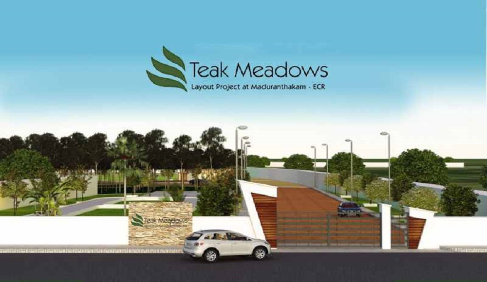 Golden Teak Meadows