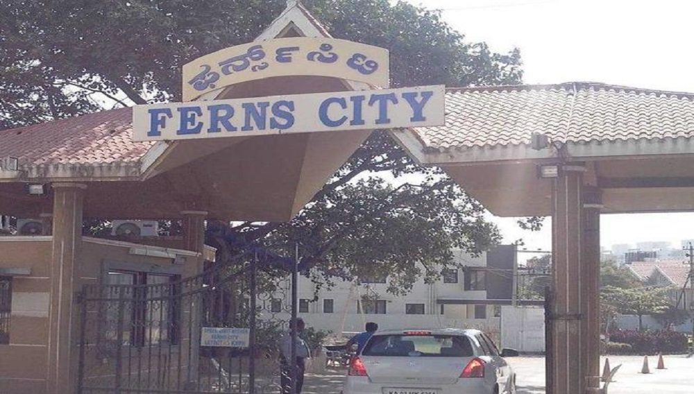 Ferns City