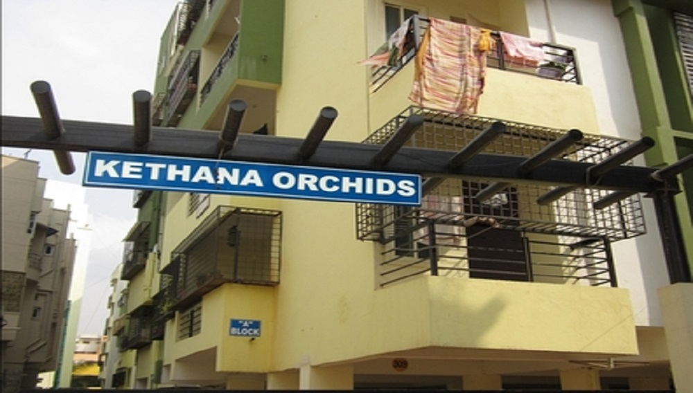 Kethana Orchids