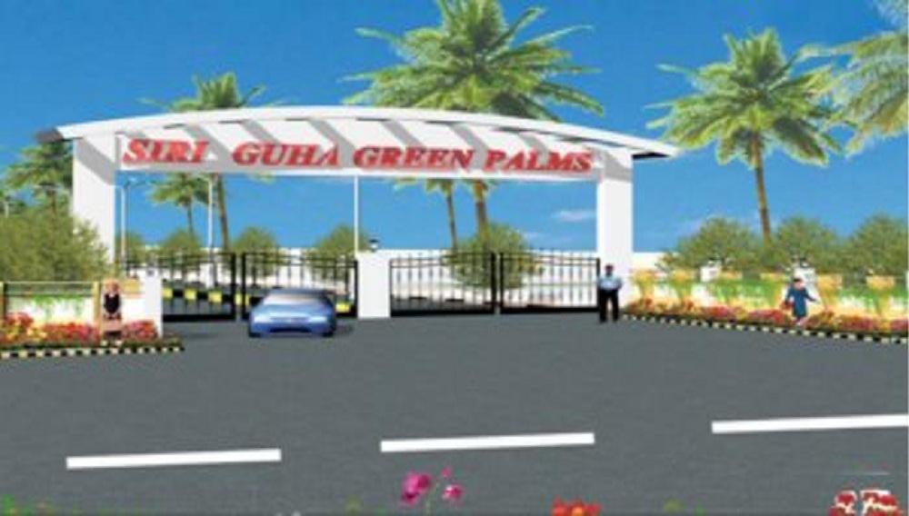 Siri Guha Green Palms