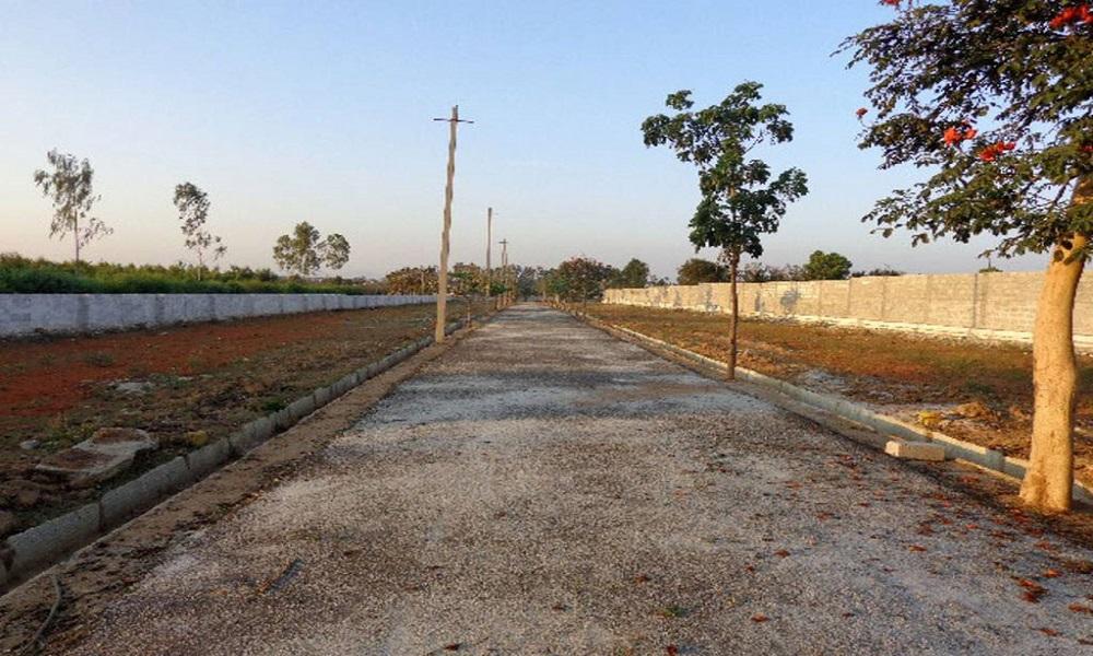 City Anokhi Layout
