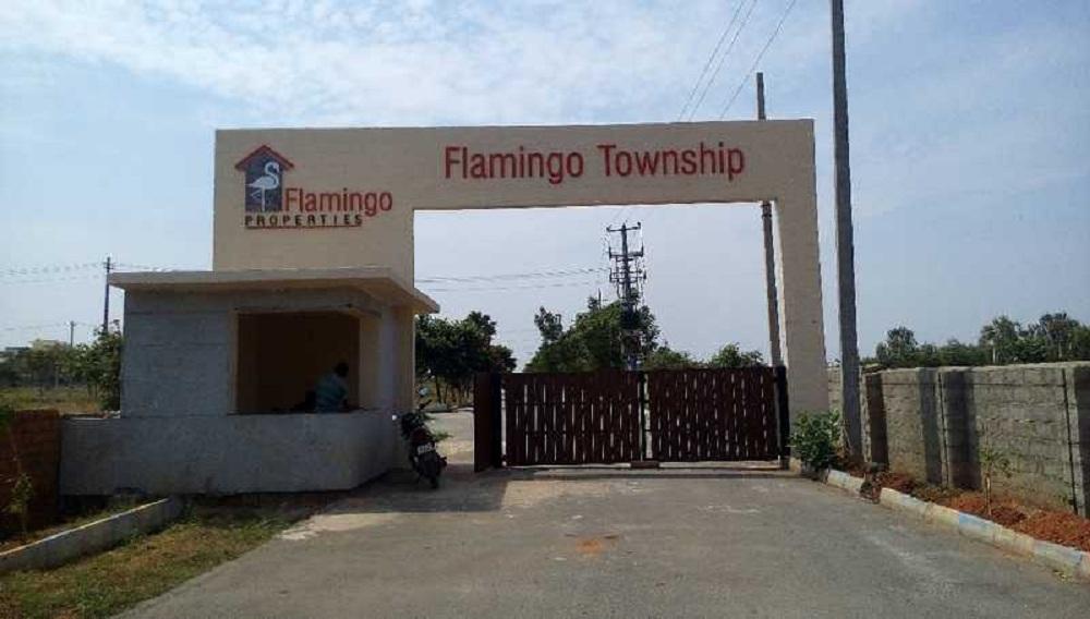 Flamingo Township Extension North Bangalore