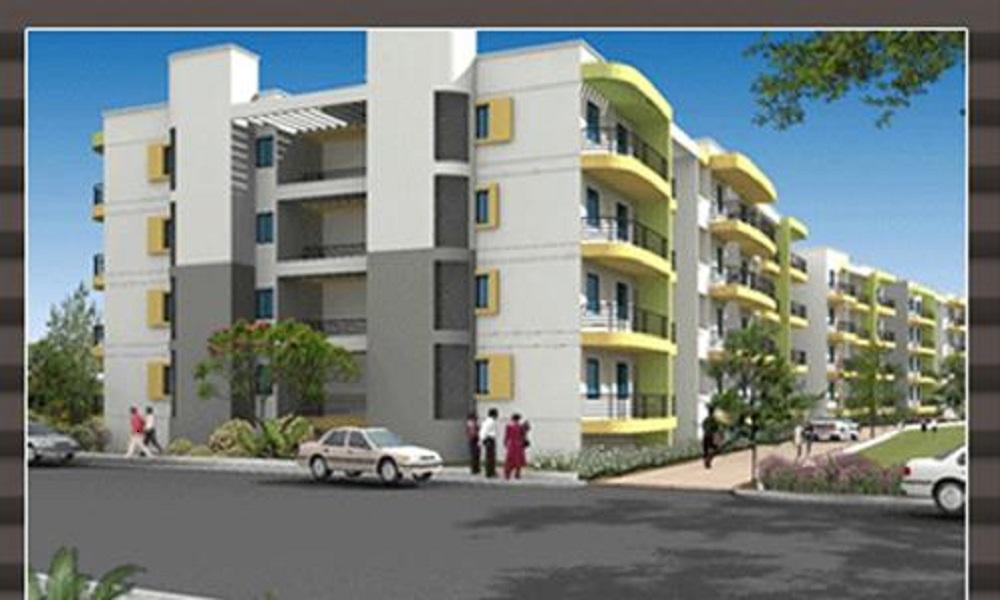 Daadys Olive Apartments