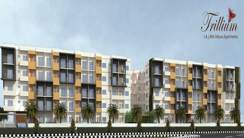 S AND S Builders Trillium Apartments