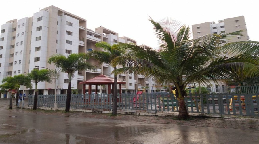 Sancheti Belcastel Phase II