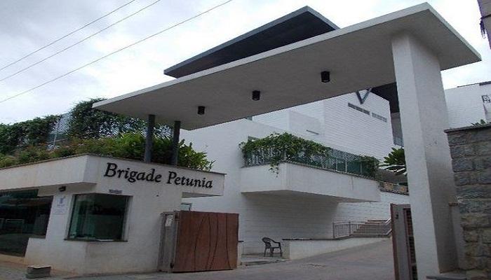 Brigade Petunia