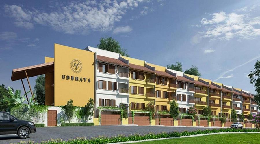 Maysons Udbhava