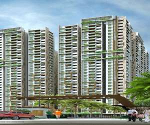 Arsis Developers Green Hills