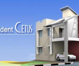 Confident Cetus