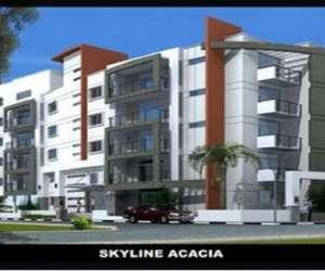 Skyline Acacia