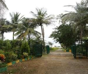 Rite Farms