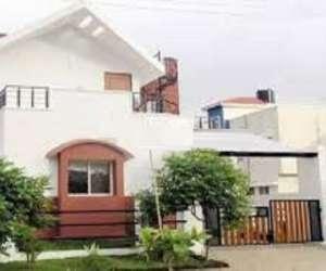 Celebrity Vintic Homes