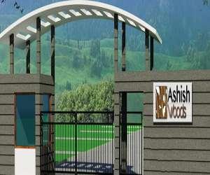 Ashish Woods